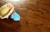 خشب صلد يبلّط [مولتي-لر] [سليد ووود] أرضية لأنّ يعيش غرفة