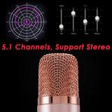 Microfone portátil do karaoke de Bluetooth do jogador sem fio do altofalante Ss-K088