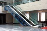 Het Gebruik van de Roltrap van Fujizy Binnen en Winkelcomplex