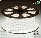 Garantie de cuivre simple de 5050 de DEL années de la bande Line/60LEDs/M Wire/PVC Cover/2