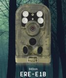 Спрятанная камера тропки звероловства видео- воображения записи долгого времени ультракрасная