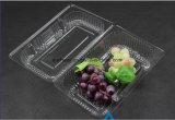 Empaquetage de empaquetage de gâteau de conteneur et de fruit de fruit d'ampoule en plastique de bloc supérieur