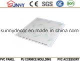 Panneau de estampage chaud du mur Panel/PVC du plafond Panel/PVC de PVC d'impression de transfert