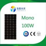 Module solaire de premier câble de la vente 100W