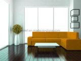 Sofá italiano moderno de lujo del ocio del sofá de la sala de estar del cuero genuino (UL-NS135)