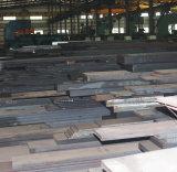 Barra piana d'acciaio della muffa di plastica (Hssd 2738, P20 modificati)