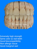 セリウム材料の中国製歯科実験室が付いているE最大王冠そして橋