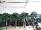 최신 판매 훈장 인공적인 실내와 옥외 반얀 나무