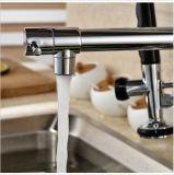 Rubinetto freddo d'ottone del dispersore di cucina dell'acqua calda con il becco doppio