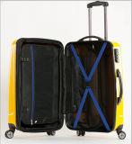 Международные путешественники & комплект багажа вагонетки бизнесмена отборный облегченный