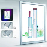 Blocco per grafici di alluminio dell'interno che fa pubblicità alla visualizzazione d'attaccatura della casella chiara del LED