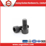 Black Hexagonal Socket Head Cap Screw