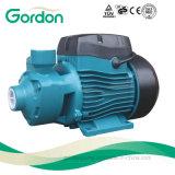 Pompe à eau périphérique de turbine en laiton électrique domestique avec le câble d'alimentation