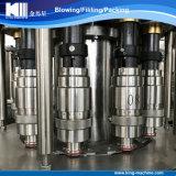 Cadena de producción de relleno automática completa del agua mineral de la botella del animal doméstico de la fábrica de China