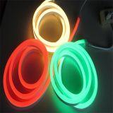 indicatore luminoso esterno impermeabile della striscia al neon di 120V 230V 2835 LED