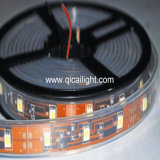 5mm LED 지구, 60LED/M (QC-6FRN-60)
