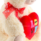 Het hete Zachte Stuk speelgoed van de Teddybeer van de Pluche van de Gift van de Valentijnskaart van de Verkoop draagt
