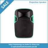 12 pouces de PA de système de l'étape extérieure DEL de haut-parleur en plastique de projection