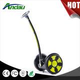 """Fábrica elétrica do """"trotinette"""" da roda de Andau M6 dois"""