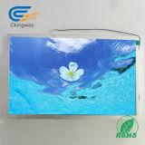 """10.1の"""" 50 Pin 600 Crtft LCD"""