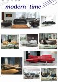Sofá italiano del cuero genuino de la sala de estar moderna (SBL-9221)