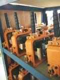 M5 Arbeidersklasse Hijstoestel van de Keten van 1 Ton het Elektrische met Elektromagnetische Rem