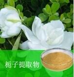 Het Uittreksel Gardenoside van gardenia