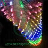 12V высоки делают свет водостотьким шнура зажима СИД в материале PVC для украшения вала