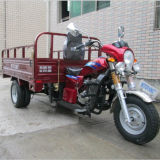 سقي التبريد الخلفي مزدوجة العجلات البنزين البضائع الثلاثيه