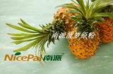 Hersteller-direktes Zubehör-Nahrungsmittelbestandteil-Ananassaft-Puder/Ananas-Puder mit hohem Reinheitsgrad