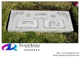 De Vlakke Grafsteen van de teller in de Begraafplaats