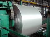 Assado com o recipiente resistente de alta temperatura da folha de alumínio