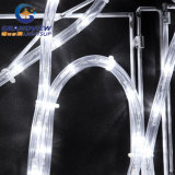 "살아움직이는듯한 290cm Wide LED White ""명랑한 Christmas"" Motif Rope Lights"