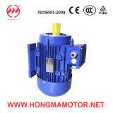 Motor de inducción asíncrono eléctrico de Hongma 200L1-2pole-30kw