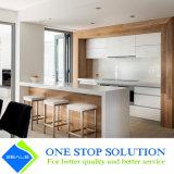 Gabinetes de cozinha modernos populares do folheado da liga e da mobília da laca (ZY 1035)