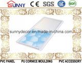 Плитки потолка, пластичный потолок PVC высокого качества строительных материалов, панели потолка PVC вместо доск гипса
