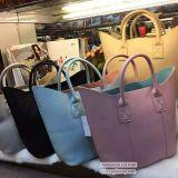 新しいデザインPU Handbag Sy7667革明白なカラー女性