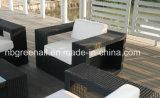 Rattan esterno/mobilia di vimini del giardino del sofà