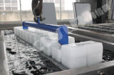 Grand générateur de glace de bloc de la production 10tpd de Focusun