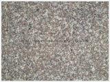 Chinees Populairste Bruin Graniet G664 voor Countertop