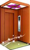 320kg 6/6 (DPH35)를 가진 세륨 가정 엘리베이터