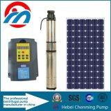 Bombas solares da irrigação da potência da C.C. 40W Sun para a irrigação da agricultura