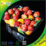 과일과 음식을%s 물집 포장 쟁반