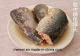 Peixe de cavalas enlatadas com salada quente com salmoura