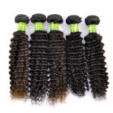 Hair humano Weave 7A Natural Kinky brasileiro Curly Virgin Remy Extension Lbh 025