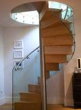 Escadaria espiral de aço dos trilhos do aço inoxidável