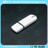 선전용 싼 파란 플라스틱 2GB USB 지팡이 (ZYF1267)