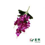 Flores artificiais 10060 da orquídea bonita quente da borboleta do preço de fábrica das vendas