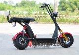 2016 500W 36V 120kg laden de Elektrische Autoped Es5018 van Harley van 2 Zetels