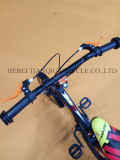 Buntes Cheap Hot Sale Bicicletas, Kids Bike, Children Bicycle mit Light Wheels